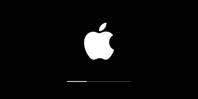 Apple Outs iOS 12.4 Beta 5, watchOS 5.2 Beta 4, and macOS Mojave 10.14.6 Beta 3