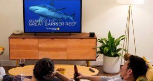 Nebula Soundbar Fire TV Edition vs. Amazon Fire TV Cube: Which should you buy?